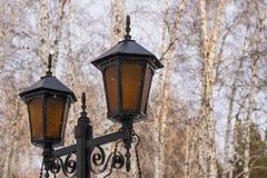 有装饰品的美丽的路旁灯 免版税图库摄影