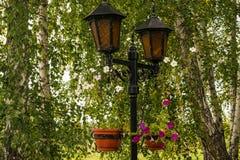 有装饰品的美丽的路旁灯 免版税库存照片