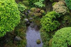 有装饰石头的日本豪华的绿色庭院在雨天wi 图库摄影
