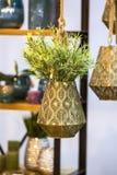 有装饰花的金属古铜色垂悬的花盆 有绿色植物的垂悬的美丽的花盆 库存图片
