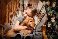 有西班牙猎狗的小女孩 库存照片