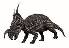 有角的恐龙 库存图片