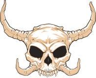 有角的skull_001 免版税库存照片