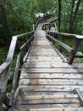 有许多步的长的台阶在瑞典 库存照片