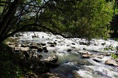 有许多石头的冲的在岸的河和树 库存图片