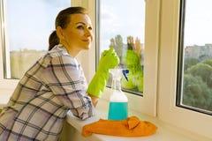 有调查一个干净的被洗涤的窗口的橡胶防护手套、旧布和喷雾器洗涤剂的女性 库存照片