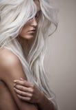 有豪华的发型的俏丽的裸体夫人 免版税库存照片