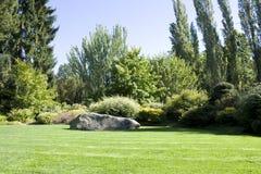有豪华的绿叶的美好的围场 免版税库存照片