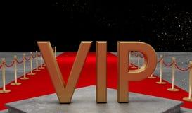 有豪华的vip隆重的私人喷气式飞机 免版税库存照片