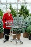 有购物车购物圣诞树的高级妇女 免版税图库摄影