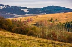 有赤裸森林的绵延山在秋天 免版税库存图片