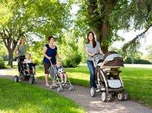 有走在公园的婴儿车的母亲 免版税库存图片