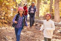 有走通过秋天森林地的孩子的祖父母 免版税库存图片