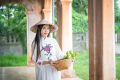 有越南文化tranditional礼服的美丽的妇女 免版税库存照片