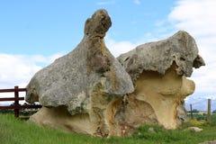 有趣地在Takiroa NZ的被塑造的被腐蚀的岩石 库存图片