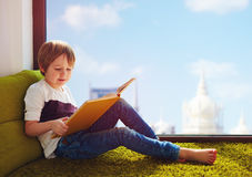 读有趣的书的逗人喜爱的男孩,当在家时坐地毯在窗口附近 免版税库存照片