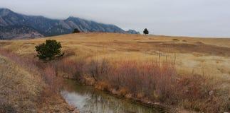有跑通过它的小河的山草甸 库存图片