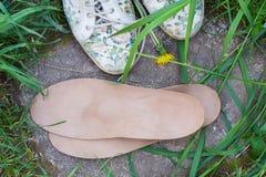 有跑鞋的皮革矫形皮鞋的内底在草 愈合 免版税图库摄影