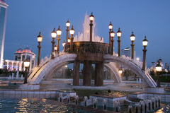 有路灯柱的喷泉夜 库存照片