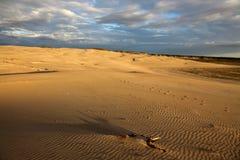 有轨道的沙漠在沙子 免版税库存图片