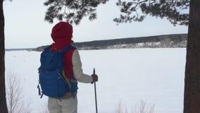 有迁徙在山的背包的女孩 冷气候,在小山的雪 高涨魔术其它短小冬天木头 有背包的一名妇女敬佩 股票视频