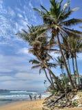 有运行在海洋棕榈滩的冲浪板的三位冲浪者 免版税库存图片