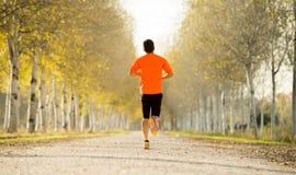 有运行户外在路足迹的强的小牛肌肉的体育人研了与树在美好的秋天阳光下 免版税图库摄影