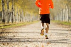 有运行户外在路足迹的强的小牛肌肉的后面看法体育人在秋天阳光下研了 免版税库存照片