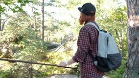 有远足在与太阳的一座山顶部的背包的远足者飘动 少妇健康活跃生活方式 冒险 影视素材