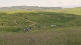 有远足在山小山的绿色草甸的背包的旅游人 影视素材