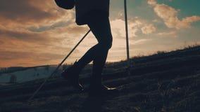有远足在山的背包的妇女旅客 走在山、自由和幸福的剪影徒步旅行者 股票视频