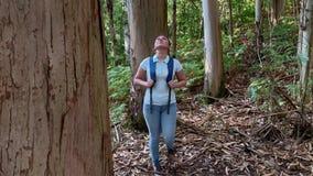 有远足在森林里的背包的徒步旅行者年轻女人看  股票录像