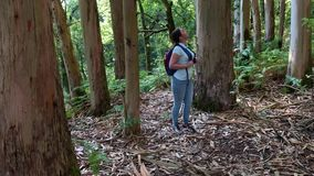 有远足在森林里的背包的徒步旅行者年轻女人看  影视素材
