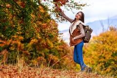 有远足在秋天期间的背包的妇女 免版税图库摄影
