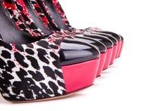 有连续站立豹子的印刷品的鞋子 免版税库存图片