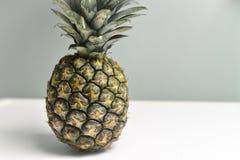 有选择性的颜色新鲜的菠萝 免版税库存图片