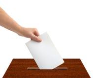 有选票和箱子的手 免版税库存图片