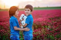 有逗人喜爱的兔宝宝的漂亮的孩子在华美的深红色三叶草领域 免版税库存图片
