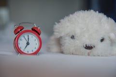 有逗人喜爱的白色狗玩偶的一个闹钟在床上早晨 库存照片