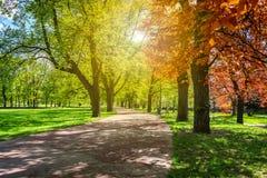 有道路和意想不到的焕发的,童话土地不可思议的秋天公园 图库摄影