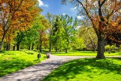 有道路和意想不到的焕发的,童话土地不可思议的秋天公园 免版税库存照片