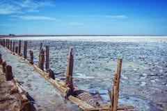 有道路的桃红色咸湖,修筑树篱由被风化的老木棍子 免版税库存图片