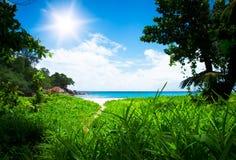 有道路的绿色森林向白色海滩。Seyshelles 免版税图库摄影