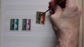 有邮票镊子的男性手在册页插入邮票 影视素材