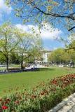 有郁金香的在全国劳动人民文化宫前面,索非亚,保加利亚春天庭院 库存图片
