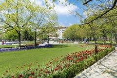 有郁金香的在全国劳动人民文化宫前面,索非亚,保加利亚春天庭院 免版税库存照片