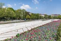 有郁金香的在全国劳动人民文化宫前面,索非亚,保加利亚春天庭院 库存照片