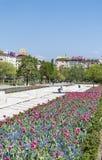 有郁金香的在全国劳动人民文化宫前面,索非亚,保加利亚春天庭院 免版税图库摄影