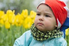 有郁金香的领域的美丽的小女孩 库存图片