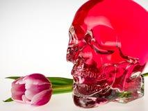 有郁金香花的红色头骨 库存图片